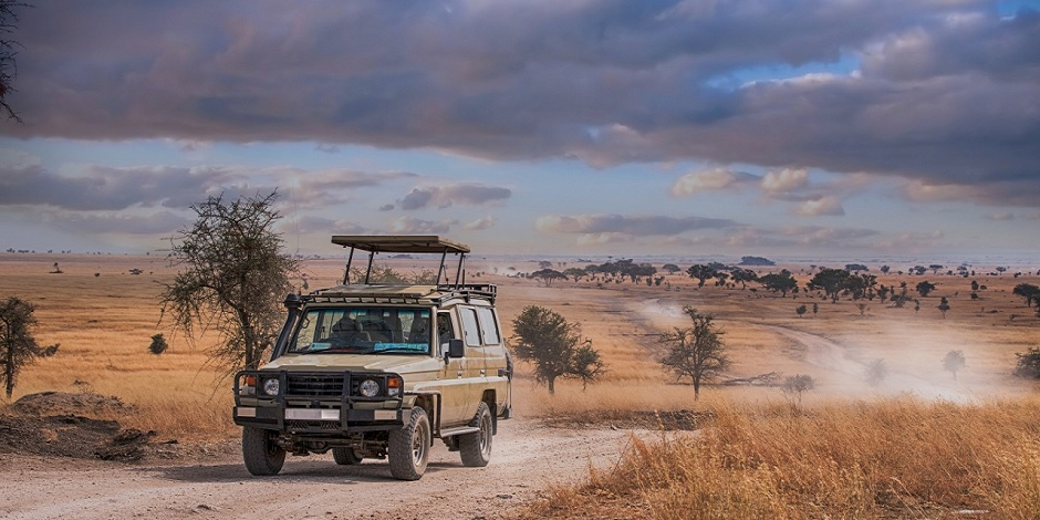 Safari-en-Tanzanie-dans-le-parc-Serengti