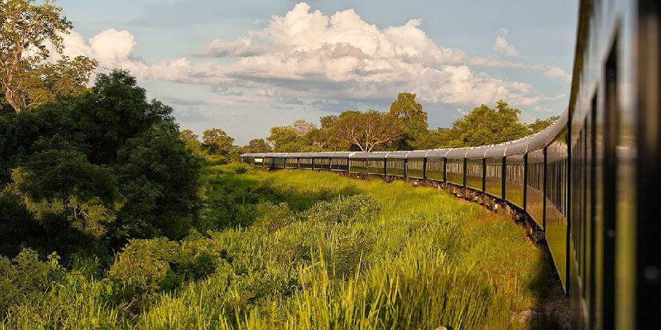 Train Rovos en Tanzanie